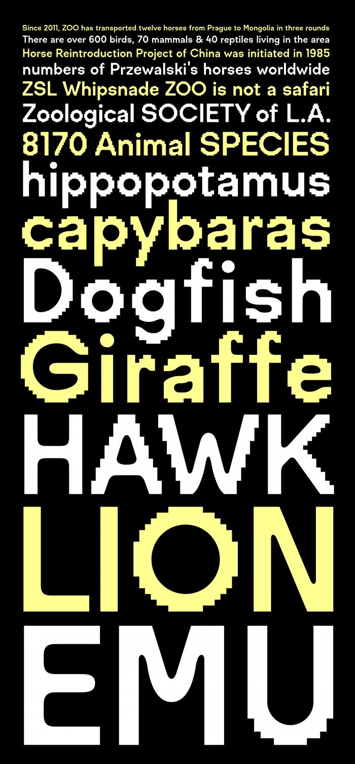 고유한 서체들(Unique Fonts)  : Visual