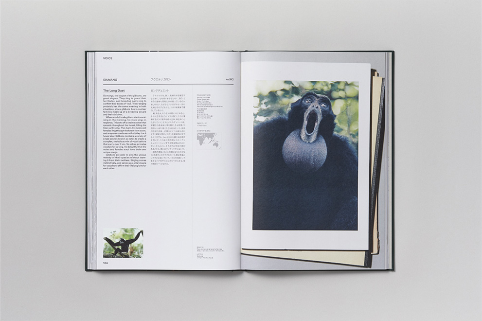 pages_book_02