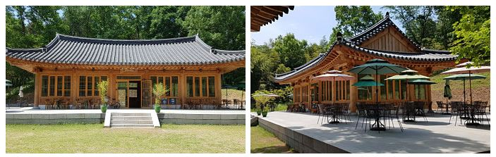 ▲이미지 출처 : 죽녹원 홈페이지 (http://www.juknokwon.go.kr)